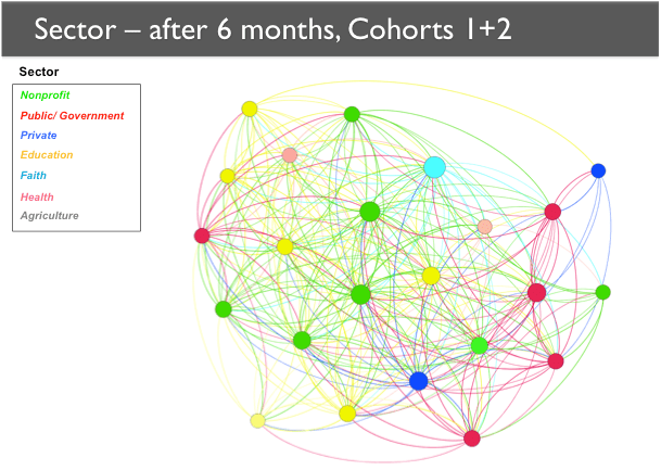 A network map showing Cohorts 1 and 2 after six months. The network has expanded to include more members, most notably in the private sector and in the public/government sector.