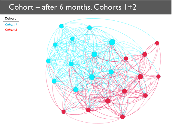 A network map of Cohorts 1 and 2 with the nodes categorized according to their cohort through color coding. Cohort 1 nodes are generally together on one side, with Cohort 2 nodes together on the other side.