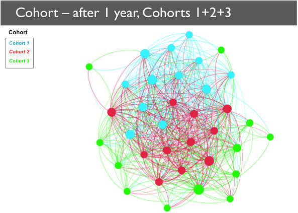 A network map showing Cohorts 1, 2, and 3 after one year. The nodes are still generally grouped by cohort, with Cohort 3 nodes mainly on the periphery.